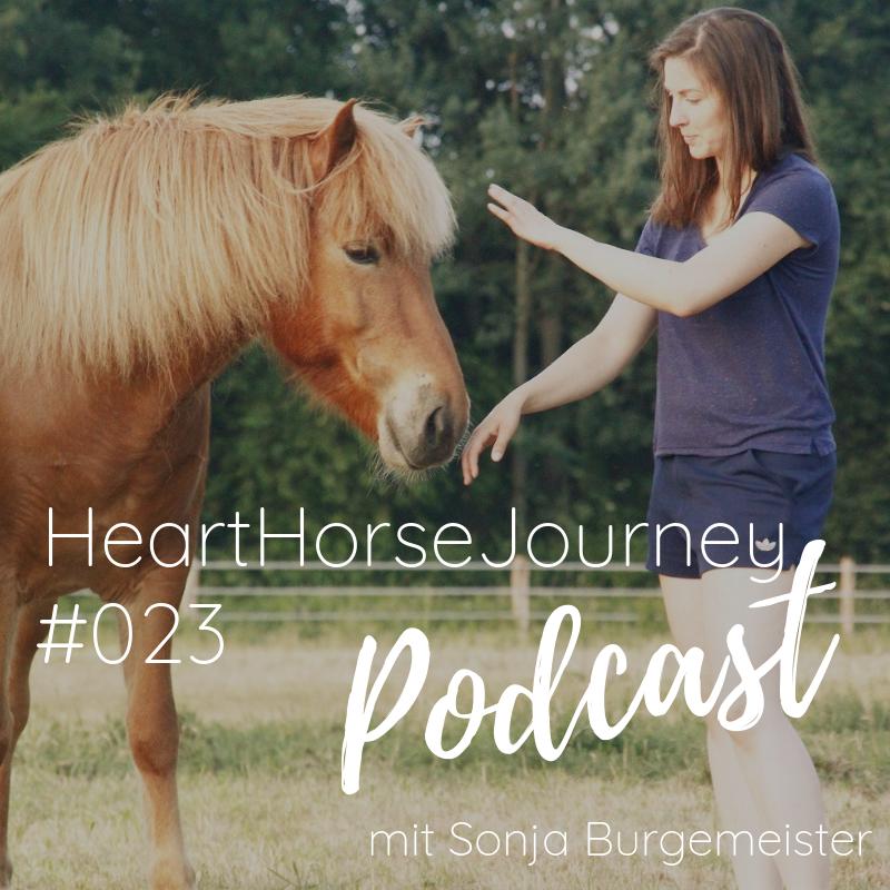 Körpersprache - Natürliche Kommunikation mit Pferden