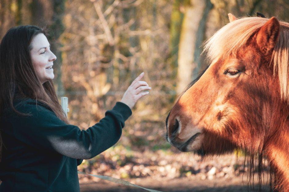 Die Bedeutung des friedvollen Weges mit Pferden