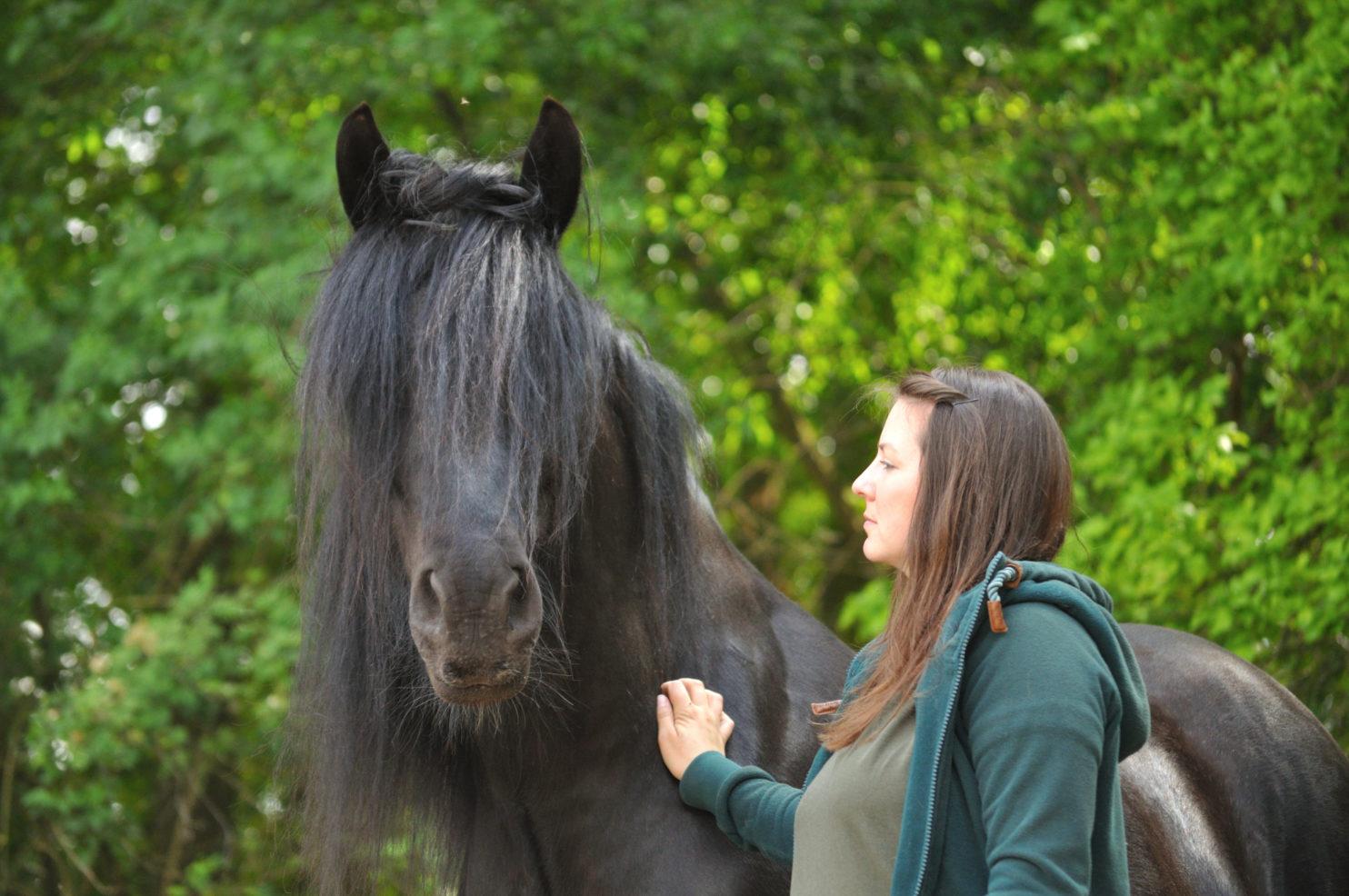 Bring dein Pferd zum Strahlen