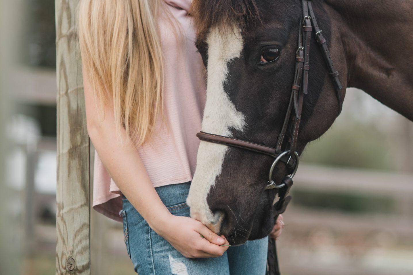Nicht das Pferd ist das Problem